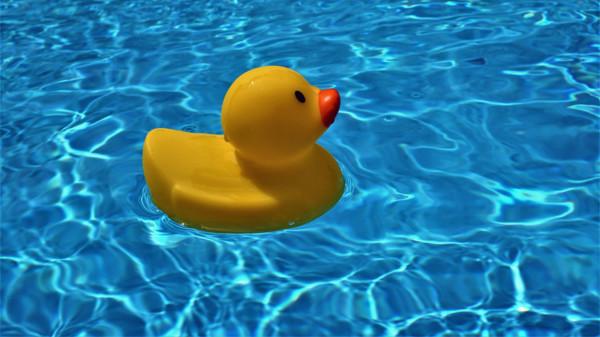 Bild: Pool mit Gummiente