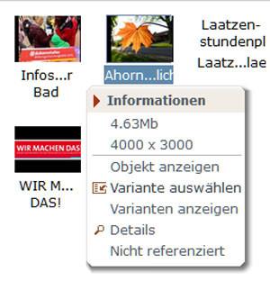 Iconbox - Variante wählen