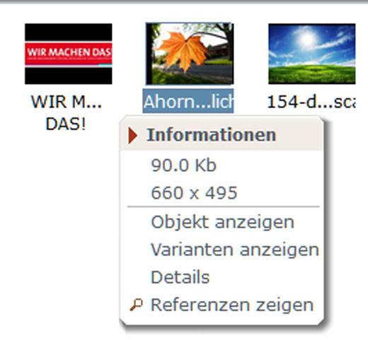 Infos Iconbox