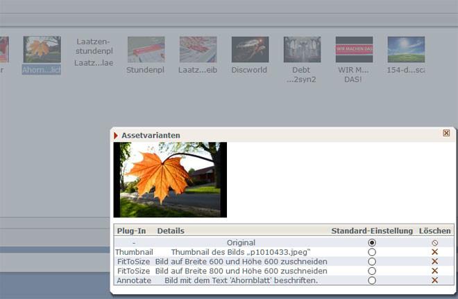 Varianten anzeigen (Iconbox)